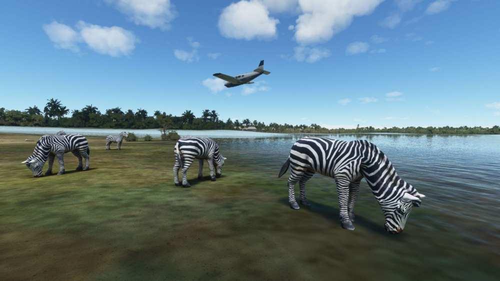 Microsoft Flight Simulator Delta del Okavango